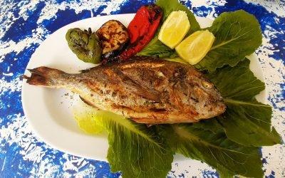 Fresh Fish Corfu